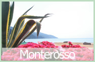 Bed and Breakfast Monterosso da Marco